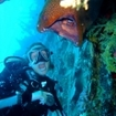 A diver with a giant moray eel in Hurghada