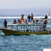 Scuba diving day trips in Lembongan, Bali, Indonesia