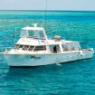 Daily dive trips to the Cairns Barrier Reef