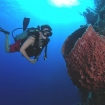 Dive the tropical waters of Belize