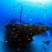 Wreck diving in Maldives