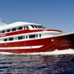 Red Sea liveaboard diving safaris