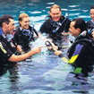 Open Water Diver pool training
