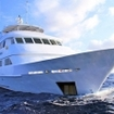 Liveaboard diving charters in the Gulf of California
