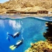 Experience the amazing scuba diving on offer in the Red Sea