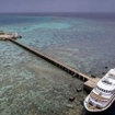 Liveaboard dive cruises in Sudan's Red Sea