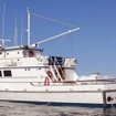 Guadalupe liveaboard diving cruises