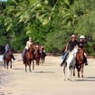 Horse riding at Cape Tribulation, Queensland