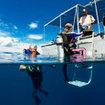 Liveaboard diving in Palau