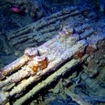 Munitions in the hold of the Thistlegorm, Sinai Peninsula