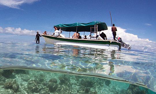 Kri eco resort diving packages raja ampat indonesia - Dive resort raja ampat ...