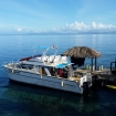 The Paradise Princess dive boat awaits you each morning