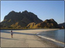 Beachcombing on one of the Komodo Islands - photo courtesy of Gavin Macaulay
